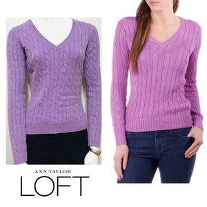 Ann Taylor LOFT V-Neck Sweater